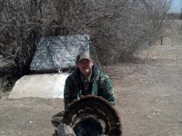Gobbler, Turkey, Turkey Hunting, Hunting Turkey, South Dakota Turkey Hunting
