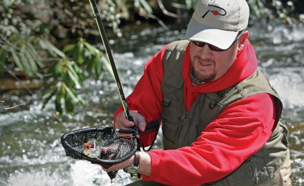 Trout, Trout Fishing, Fishing for Trout, Fish