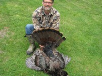 Gobbler, Turkey, Turkey Hunting, Hunting Turkey, New Hampshire Turkey Hunting