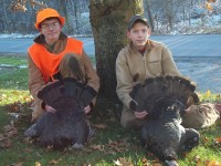 Gobbler, Turkey, Turkey Hunting, Hunting Turkey, New Jersey Turkey Hunting