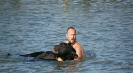 What do you do when you see a 375-pound black bear take a leap into the Gulf of Mexico? If you