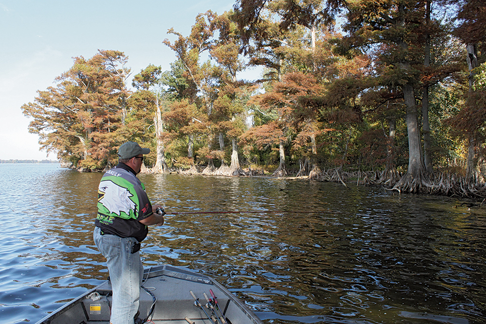 Top Places for Bass Fishing in Tennessee