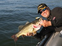 Bass, Bass Fishing, Trophy Bass, Lunkers