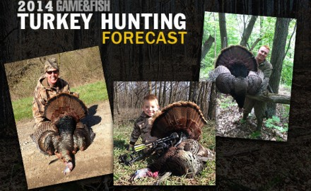 In these state-by-state spring turkey hunting forecasts for each of the lower 48, you'll find harvest data, best public lands, youth hunt info and more.