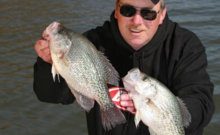 Crappie, Crappie Fishing, Papermouths, Panfish