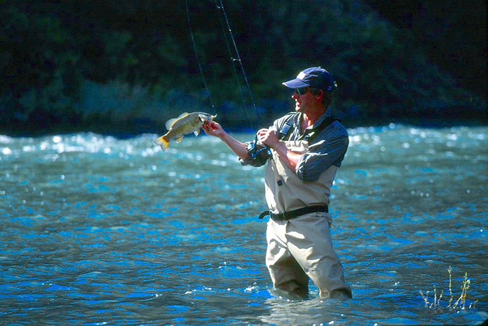 Top places for bass fishing in washington game fish for Bass fishing washington