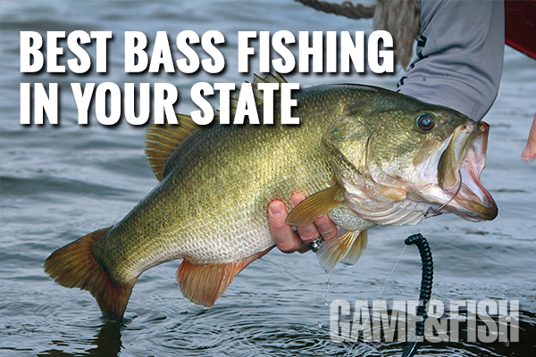 bass best fishing in the us, where to fish for bass