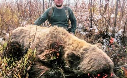 bear_fitzgerald_f