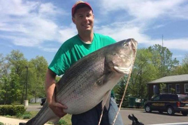 New York Fisherman Catches State Record Striped Bass