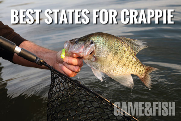 Best States for Crappie in 2014