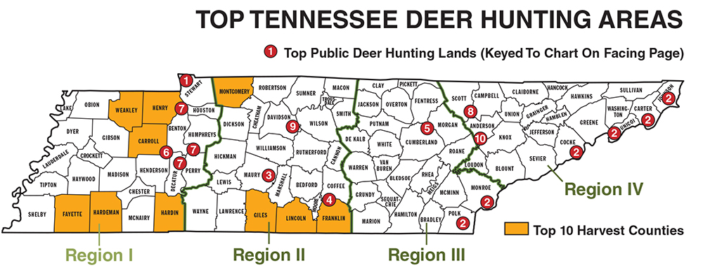 Tennessee Deer Hunting Forecast For 2014