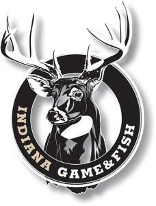 IN Logo.indd