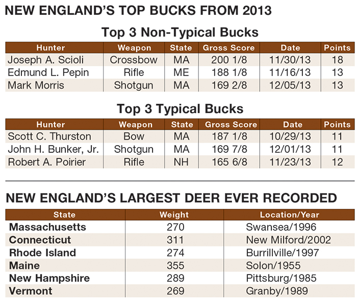 Best Big Buck States for 2014: New England