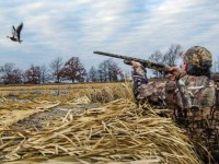 35-Waterfowl-Tips-Feature