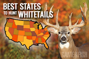 2014 Deer Forecast