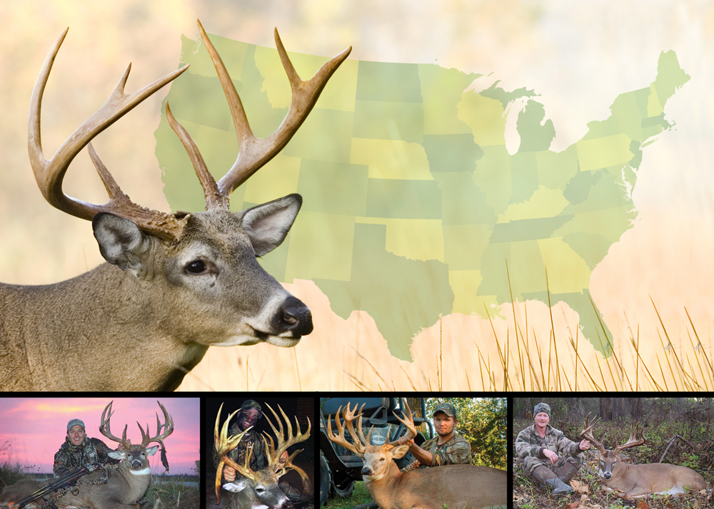 Best Big Buck States for 2014