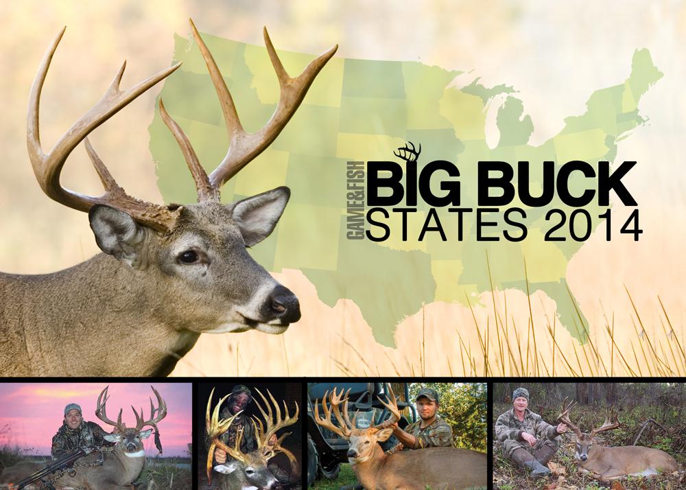 Big-Buck-States