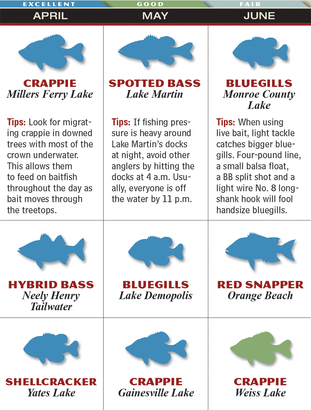 Bottom bouncer picture and images for Best time to fish calendar