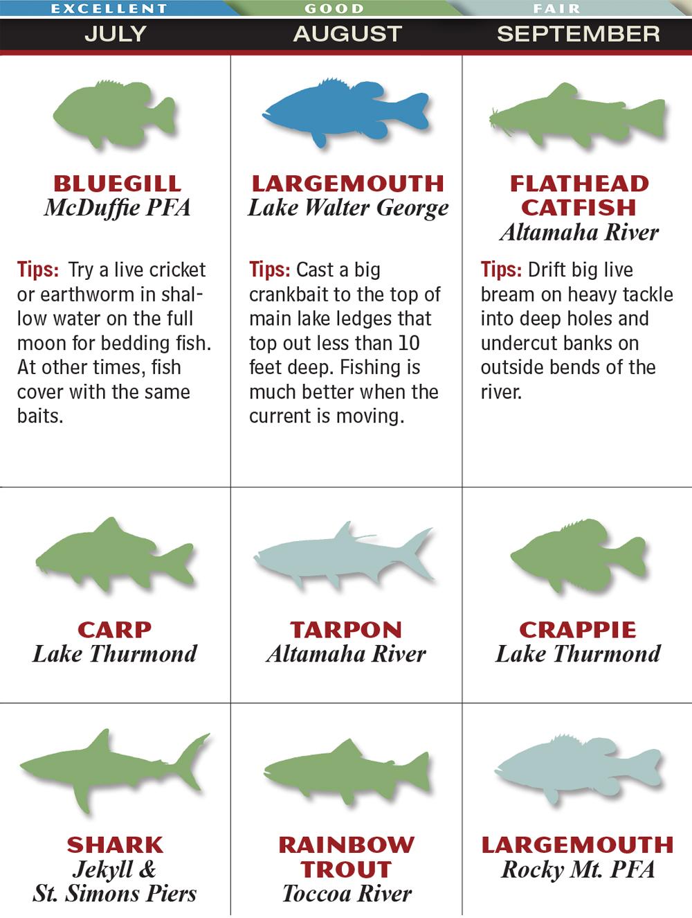 Freshwater fish of georgia - Ga Jul Sep