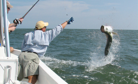 Finding tarpon can be difficult at times, but not during May in Boco Grande Pass, where