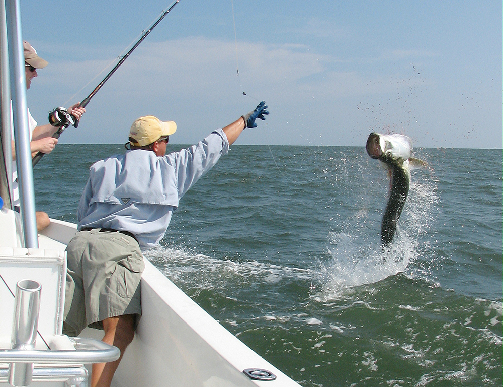 Florida 2015 fishing calendar game fish for Florida tarpon fishing