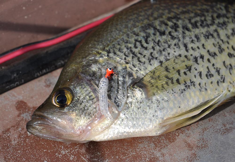 Pennsylvania 2015 Fishing Calendar