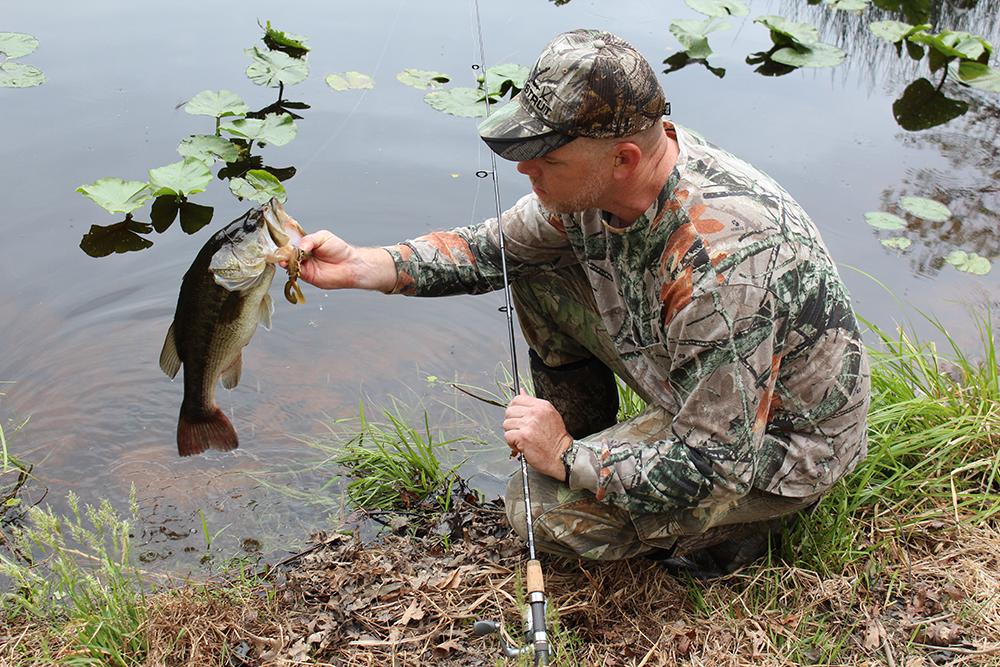 Virginia 2015 fishing calendar game fish for Hunt fish va