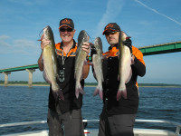 Mississippi 2015 fishing calendar game fish for Fishing in iowa