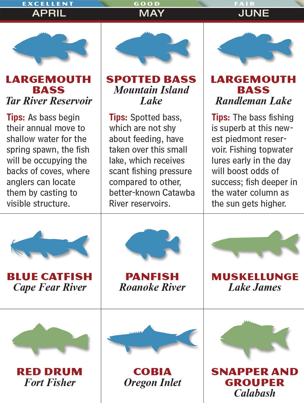 Freshwater fish nc - May Nc Apr Jun