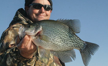 The Santee Cooper lakes produce some of the biggest crappie in the South. This example is being