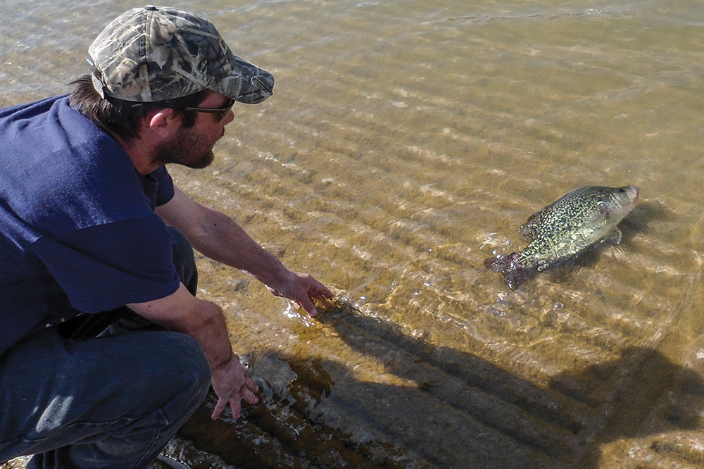 Crappie fish record for Fishing lakes in texas