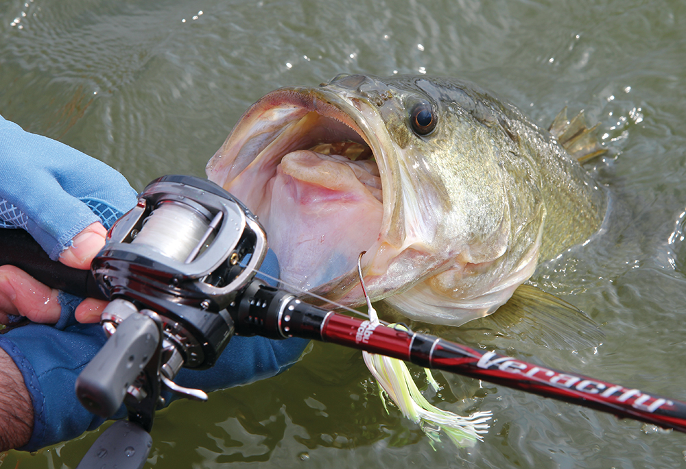 Here's what bass managers are doing to create more and better fishing this season.