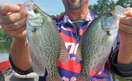 NC-Crappie_F