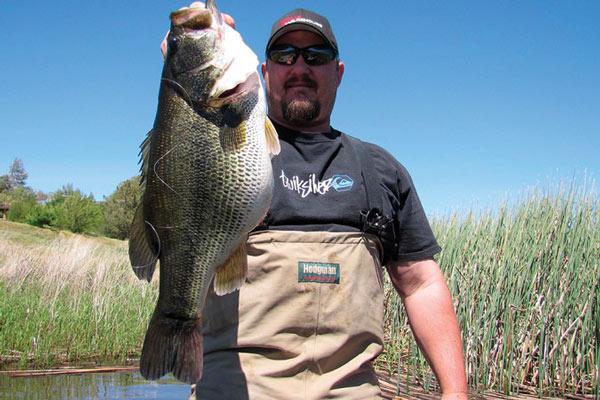 Alabama Bass Forecast for 2015