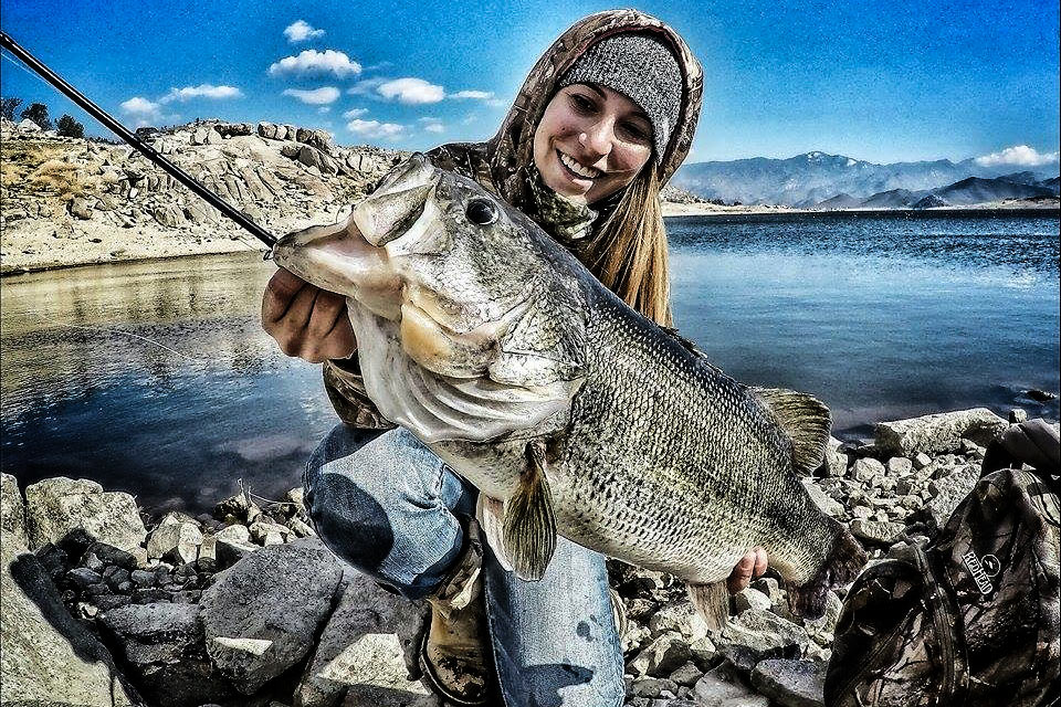 Game fish 2015 bass forecast game fish for Best time to go bass fishing