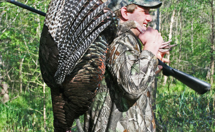 Turkey numbers are at an all-time high in most of the region.