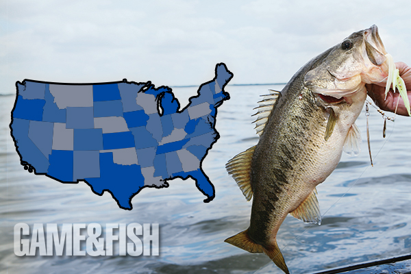 Game & Fish 2015 Bass Forecast