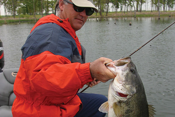 Game fish 2015 bass forecast game fish for Best bass fishing lakes in texas