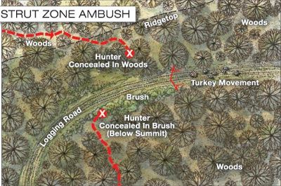Turkey Ambush Tactics for Dealing With Silent Toms
