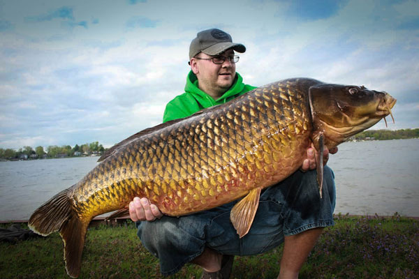 Is this michigan 39 s biggest carp ever on rod reel game for Fish in michigan