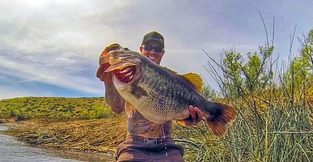 California Bass Angler Lands Monster 16-Pound Largemouth