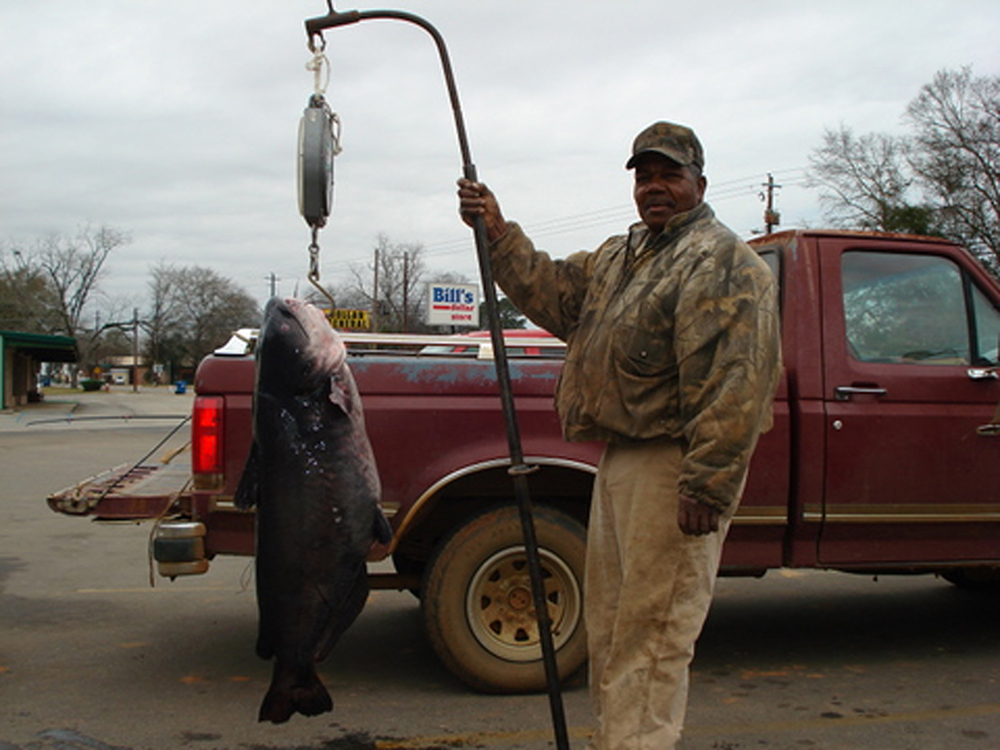 Indiana Catfish Forecast for 2015