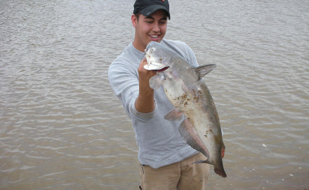 Here are locations and tips for landing big Hawkeye State cats.  Brothers and sisters of Iowa's
