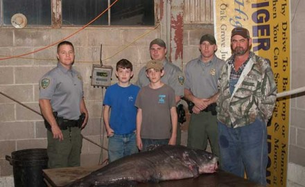 Louisiana is full of catfish, all three species, and anglers take advantage of this in many ways