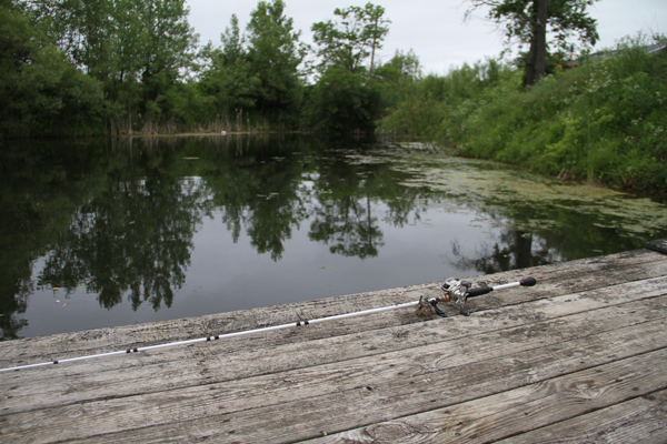 4 fundamental steps to becoming a better pond angler for Pond fishing tips