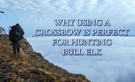 As a dedicated member of the archery and hunting fraternity – with poor archery skills – I thought the crossbow might provide the advantage I needed for an upcoming elk.