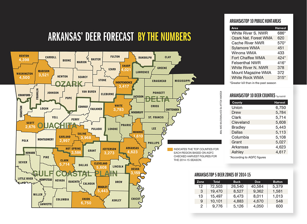 Arkansas Deer Forecast For 2015  Game Amp Fish