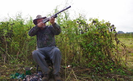 When it comes to dove hunting, I'm a bit of a fanatic. I started hunting mourning doves when I