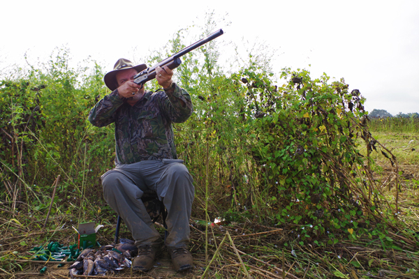 5 Bad Habits of Dove Hunters and How to Fix Them