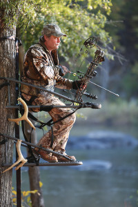 tips for proper tree stand placement